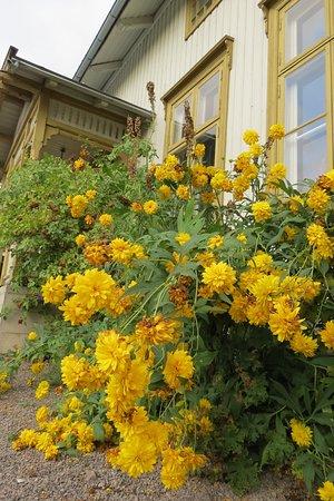 Holmestrand, Norwegia: August in the garden