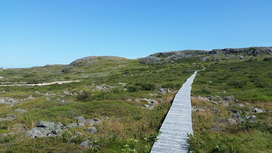 Grates Cove, Canadá: The beginning of the trail