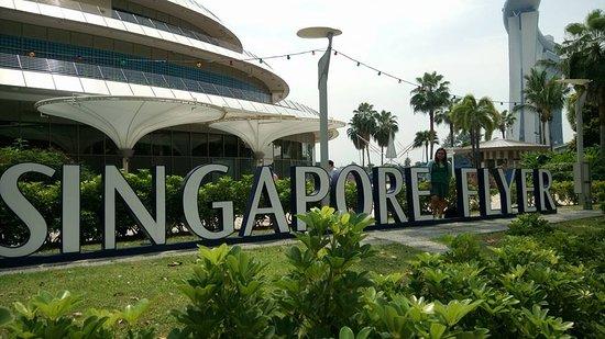 Singapore Flyer: giant Ferris wheel in Singapore