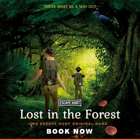Takapuna, Nya Zeeland: Lost in the Forest