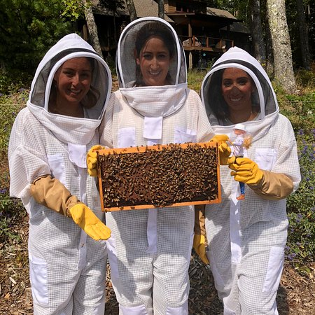 Lake Toxaway, นอร์ทแคโรไลนา: Bride to be holding a Bee frame - KILLERBEES HONEY BEE FARM & HONEY TASTING TOUR