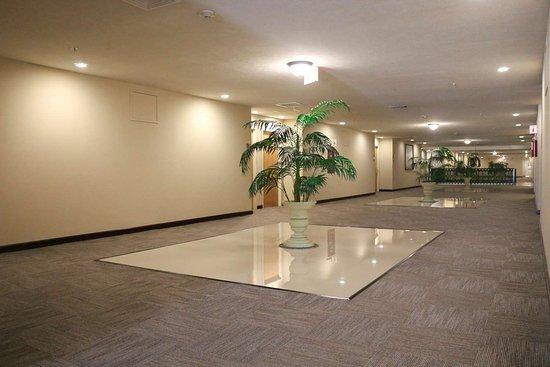 Hampton Inn by Hilton Tampico Zona Dorada