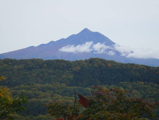 Ajigasawa-machi, Japan: マザーツリーからの景色