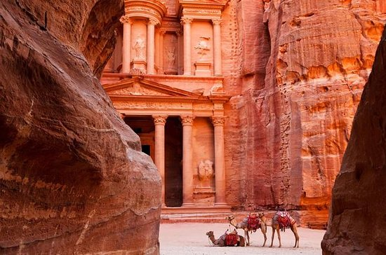 Private Tour: Petra Day Trip...