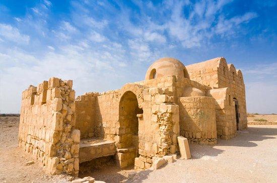 Private Tour: Desert Castle Tour of...