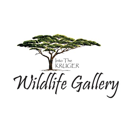 Into The Kruger Wildlife Gallery