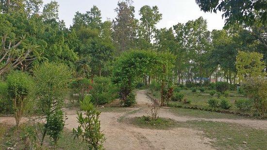 Birendranagar, Νεπάλ: Park