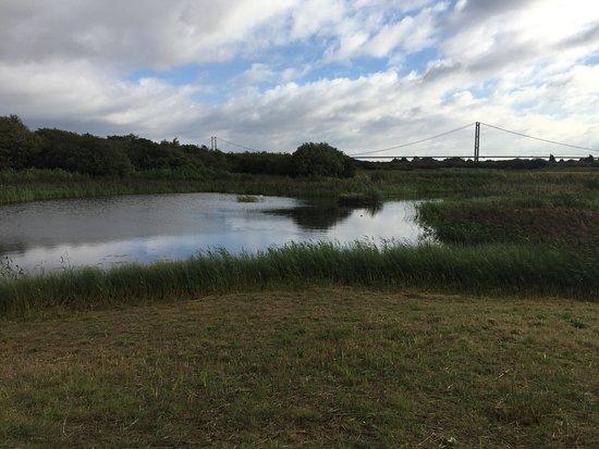 The Humber Bridge: Humber Bridge