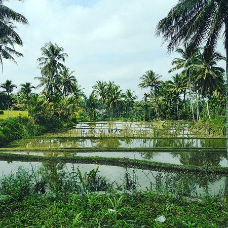 Kuta, Ινδονησία: IMG_20180726_171445_577_large.jpg