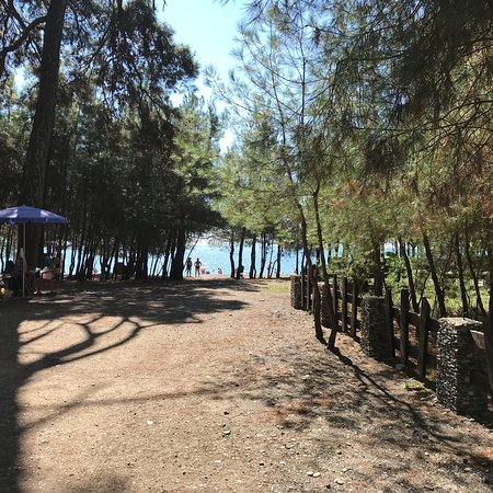 Лдзаа, Грузия: Пляж Золотой берег