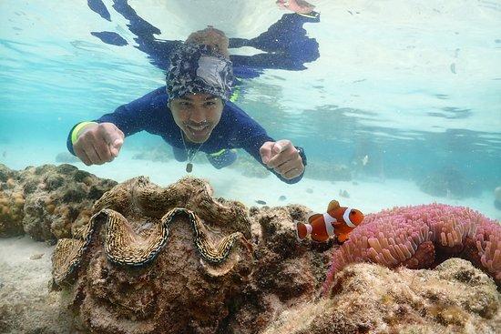 Samaesarn Snorkeling Trip