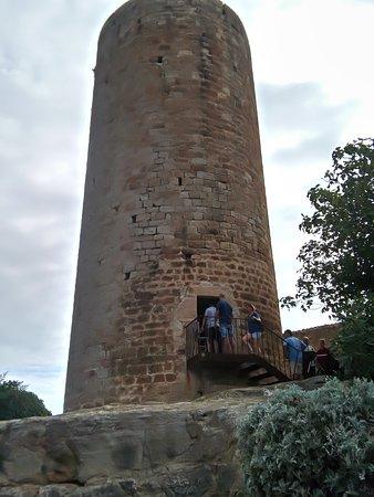 tour avec vue panoramique de pals