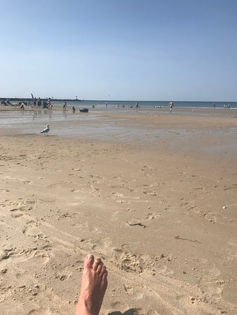 East Dennis, MA: Nice sandy beach with lots of room to run and play