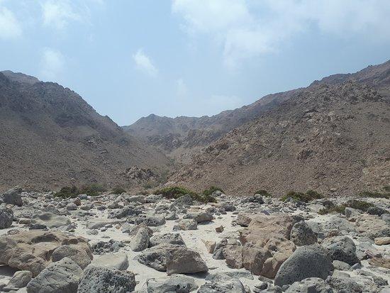 Rayna Day Tours & Travels : Musandam, Oman