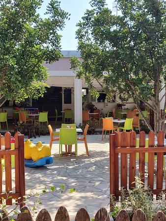 Avgorou, Кипр: The Cafe