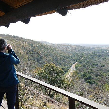 Amazing safari, beautiful lodge, fantastic staff - very close to perfect