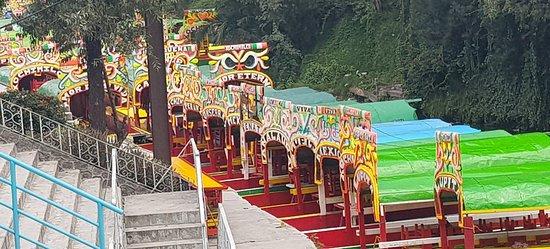Xochimilco: Vista