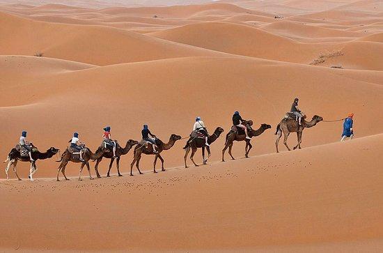 Visitar Desierto