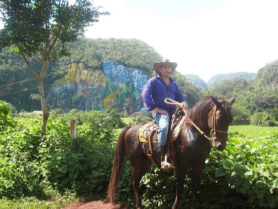 Excursion Vinales