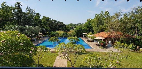 Thirappane, Sri Lanka: 20180911_090105_large.jpg