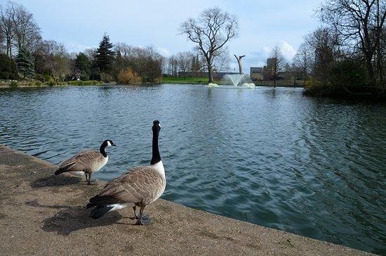 Leicester Abbey: Στο πάρκο Abbey