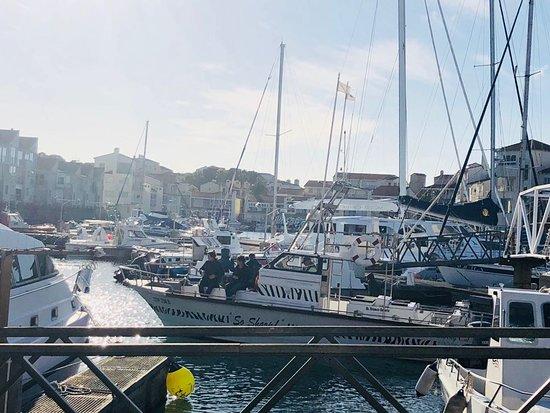 Port St Francis, Sudáfrica: Wonderful!