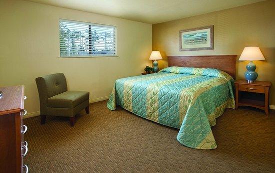 Ocean Park, واشنطن: Suite