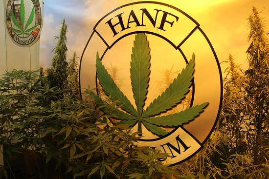 Cannabis - Hanf Museum Berlin
