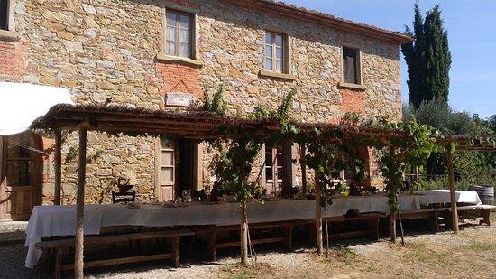 Castiglion Fibocchi, Italia: Mittagessen in der Fattoria La Vialla