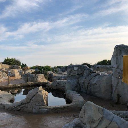Thermae Oasis : photo1.jpg