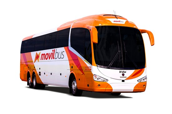 ‪Movil Tours‬