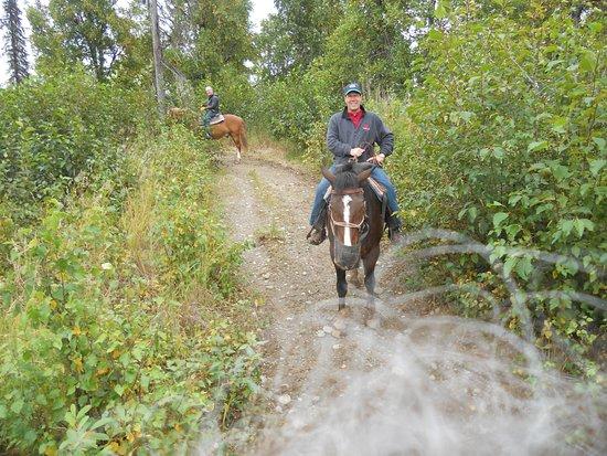 Trapper Creek, Alaska: Horseback riding is available off site.
