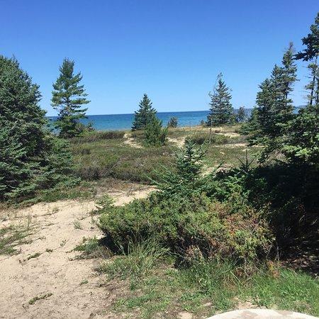 Carp Lake, MI: Views from rustic campsite X