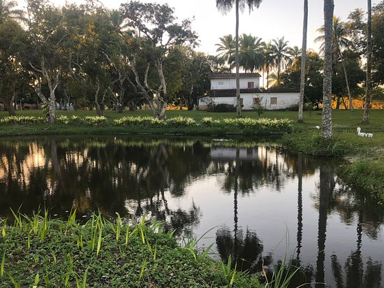 Jaguaripe, BA: Vista do Jardim