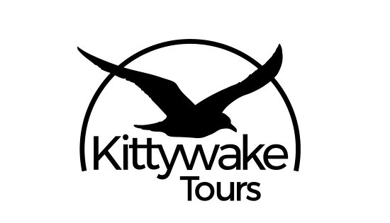 Lerwick, UK: Kittywake Tours