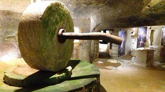 Museo Ipogeo dell'Olio del Salento
