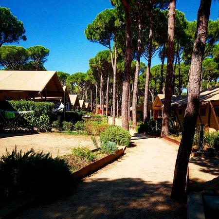 Camping Sandaya Cypsela Resort: IMG_20180822_100155_024_large.jpg