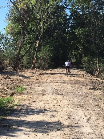 Wild Goose State Trail: Wood chips on the trail