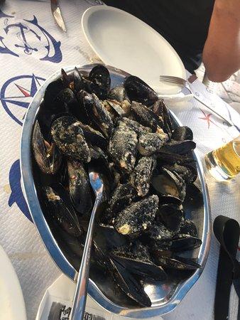 Kamenice: Mussels