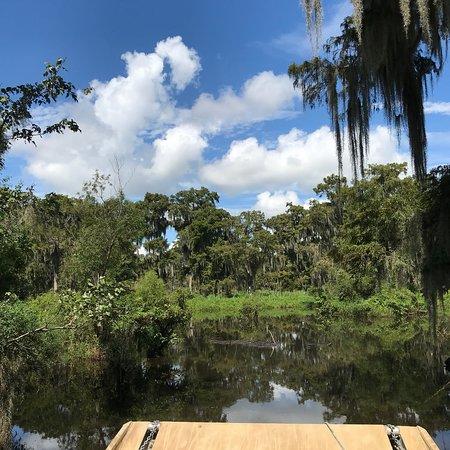 Des Allemands, Луизиана: photo4.jpg