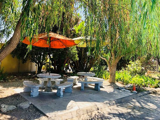 Fillmore, Калифорния: Shady picnic area