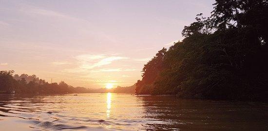 Sukau, Malasia: 20180909_103021_large.jpg