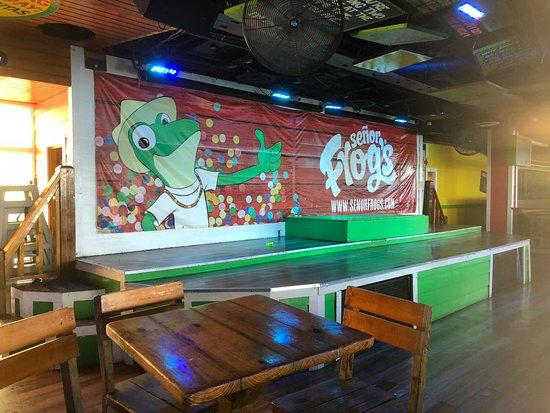 Señor Frog's: Fun decor.