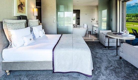 Crozet, فرنسا: Guest room