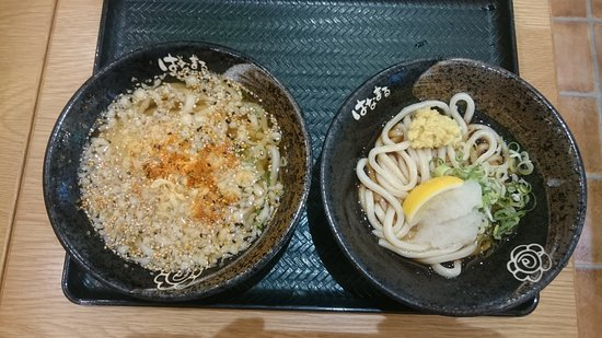 Hanamaru Udon Northport Mall Picture