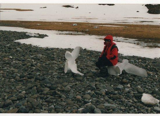 Antarctica: Cile, Antartico - Base Arctowski  - Tra le balene di Francisco Coloane