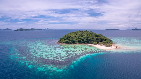 Culion, Philippines: Our reef, explore the rich marine life