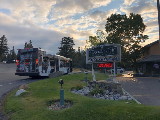 Douglas Fir Resort & Chalets: The tourist bus...the front desk will get you a free pass...avoid driving/parking in Banff