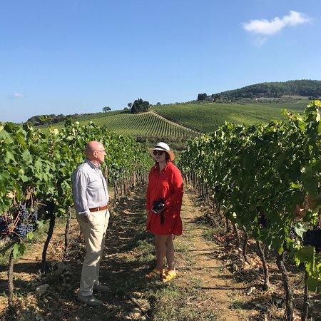 Scenic wine tours in Tuscany: photo4.jpg