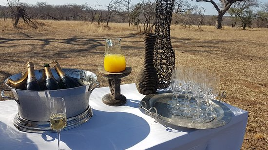 Ulusaba Private Game Reserve, South Africa: Game drive pancake and bubbly stop